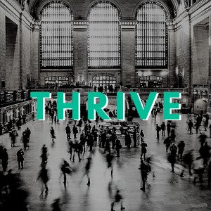 Coworking Blog for The Thrive Network